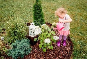 child_garden_mulch