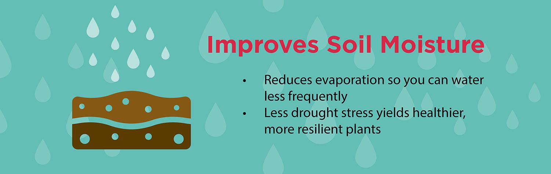 soil-moisture